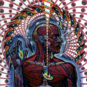 lateralus_18219